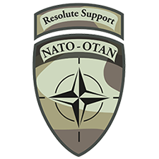 Resolute Support Mission (RSM)
